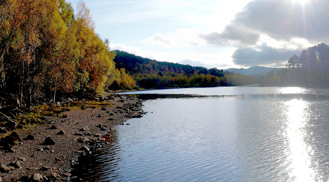 Glen Affric in Autumn